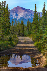 A mountain road captured by Barry Ryziuk